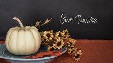 thanksgiving-2903166__340