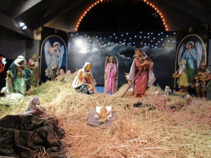 Blessed Nativity and The Broken Camel
