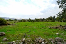 Plain-of-Bethsaida-